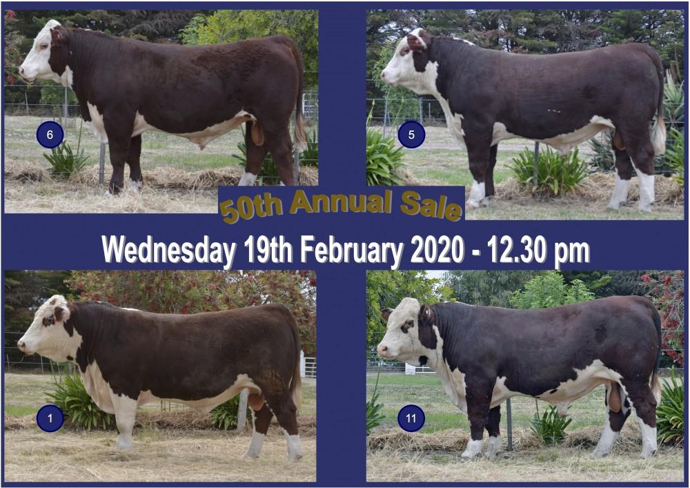 2020 Bull Sale