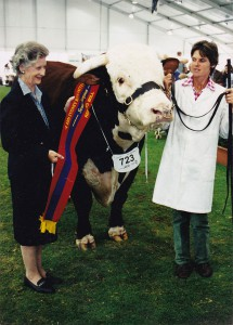 Ennerdale Scandal Senior Champion Bull Sydney Royal 2001